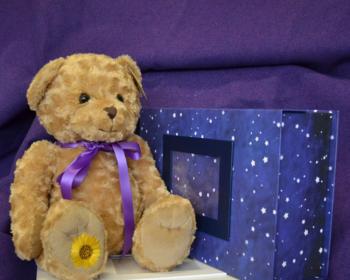 Memory bear and box